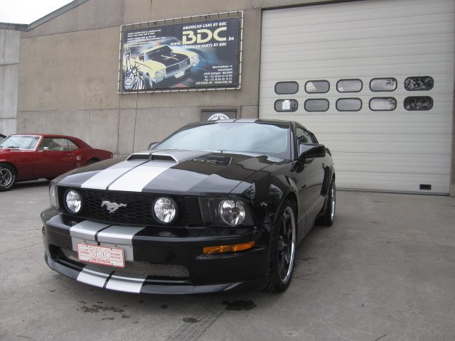 mustang shelby look (4)