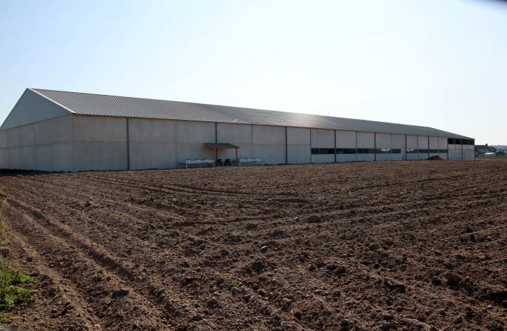Migneau Dries, Agrobouw, Opslagloodsen, Landbouwloods, Agrarisch gebouw, hangarbouw, hangar bouwen, nieuwe hangar, magazijn bouwen