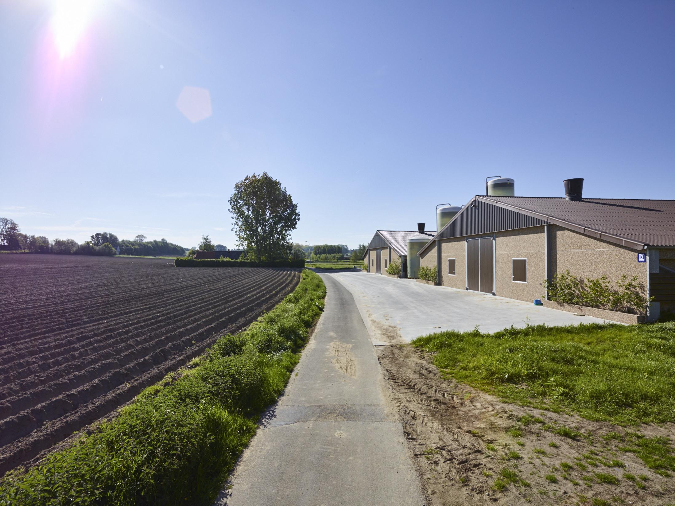 Van driessche. Wortegem-Petegem. Agrobouw. Pluimveestallen. Kippenstallen. Agrarische gebouwen