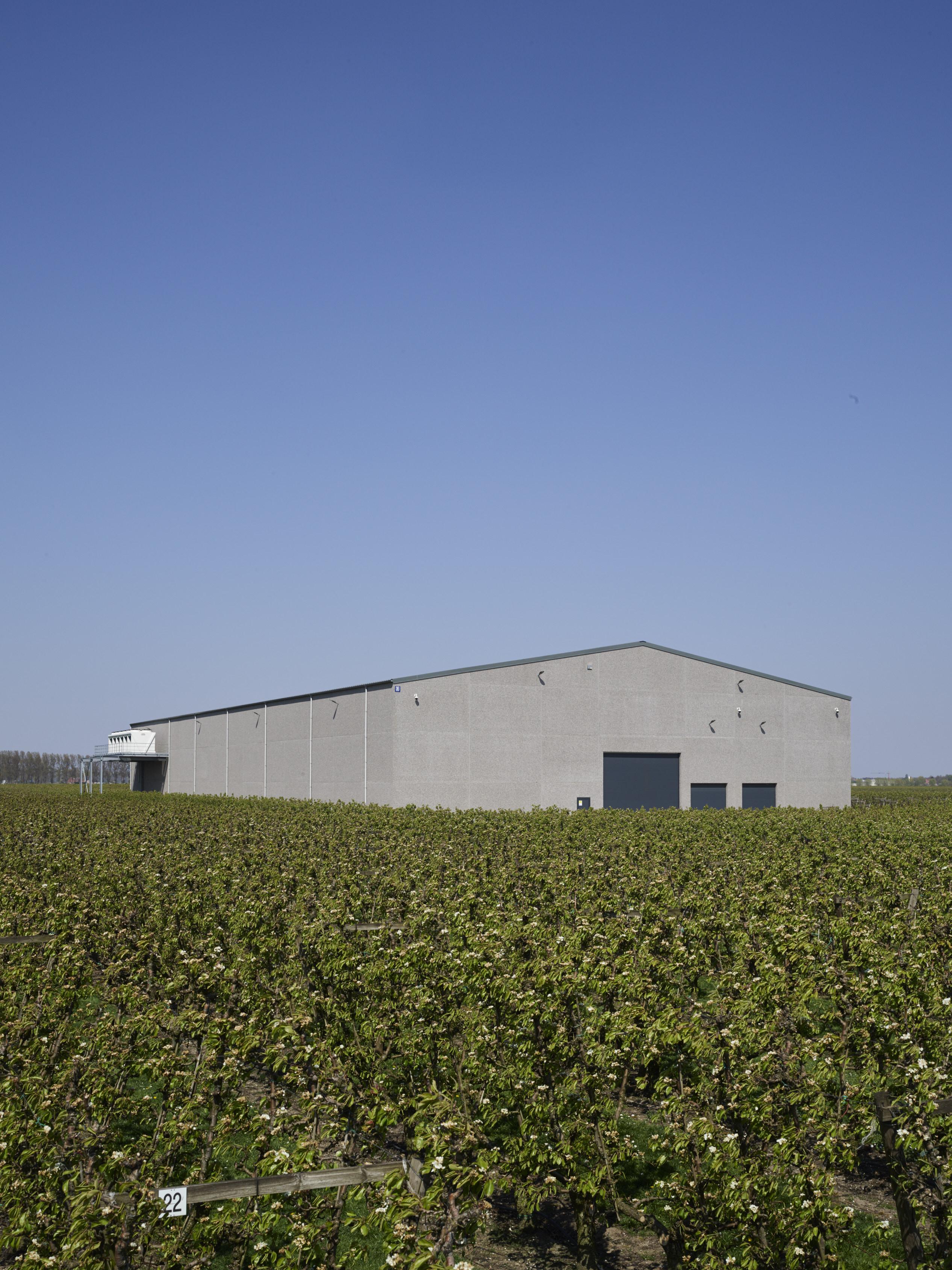 Gefi fruit Beveren. Agrobouw. Agrarische gebouwen. opslagloodsen. Stockageloods