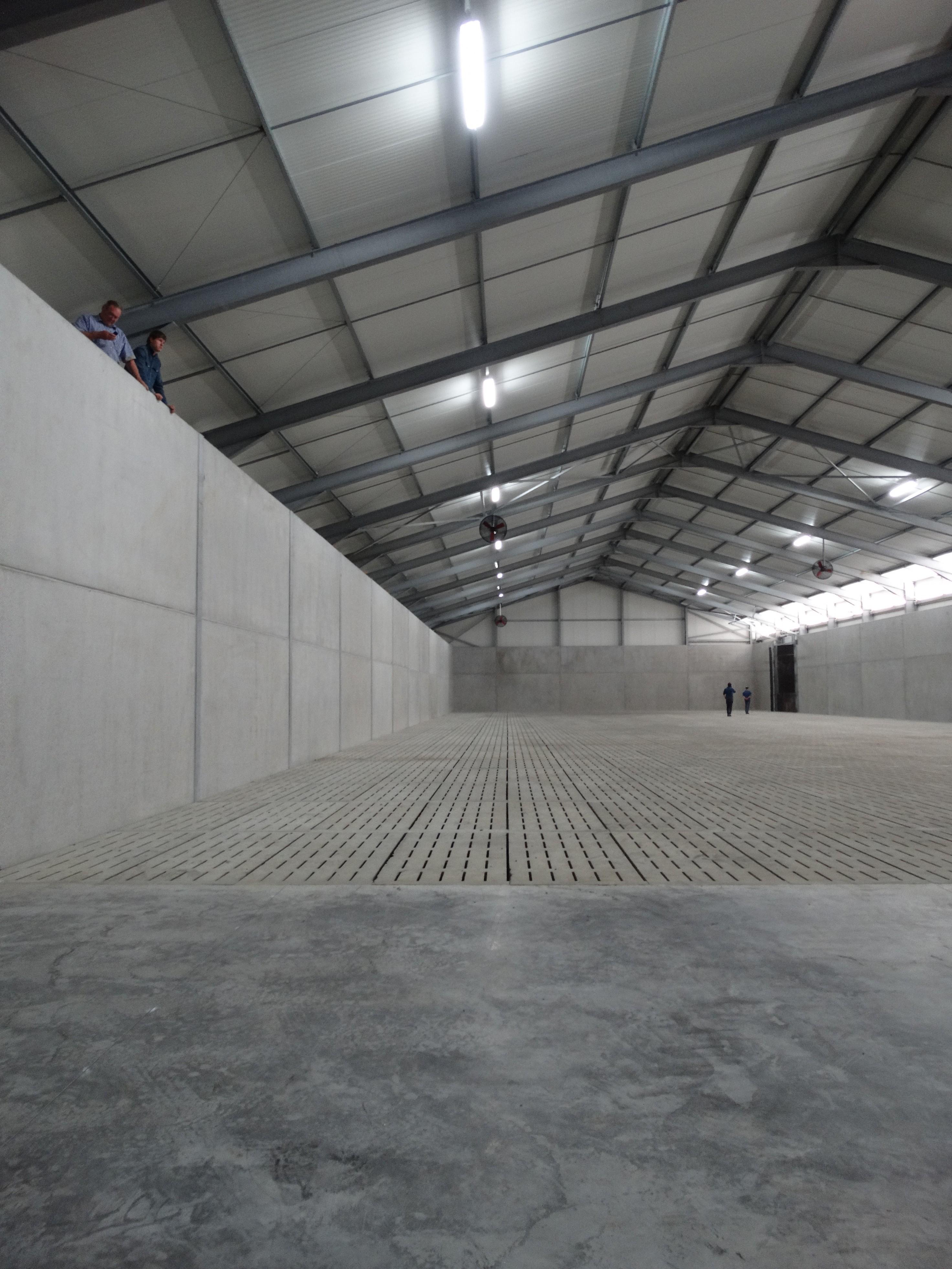 lefevre-Rosseignies-aardappelloods_hangar stockage pommes de terre (2)