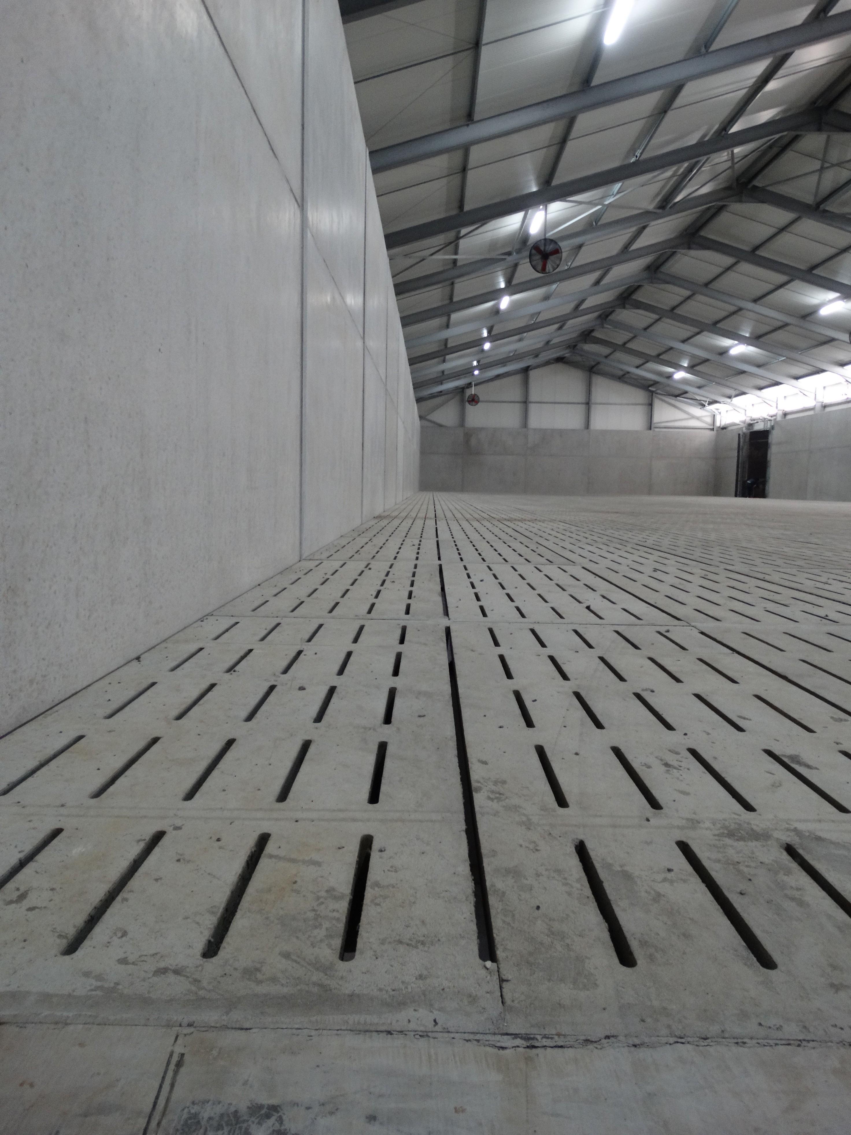 lefevre-Rosseignies-aardappelloods_hangar stockage pommes de terre (3)