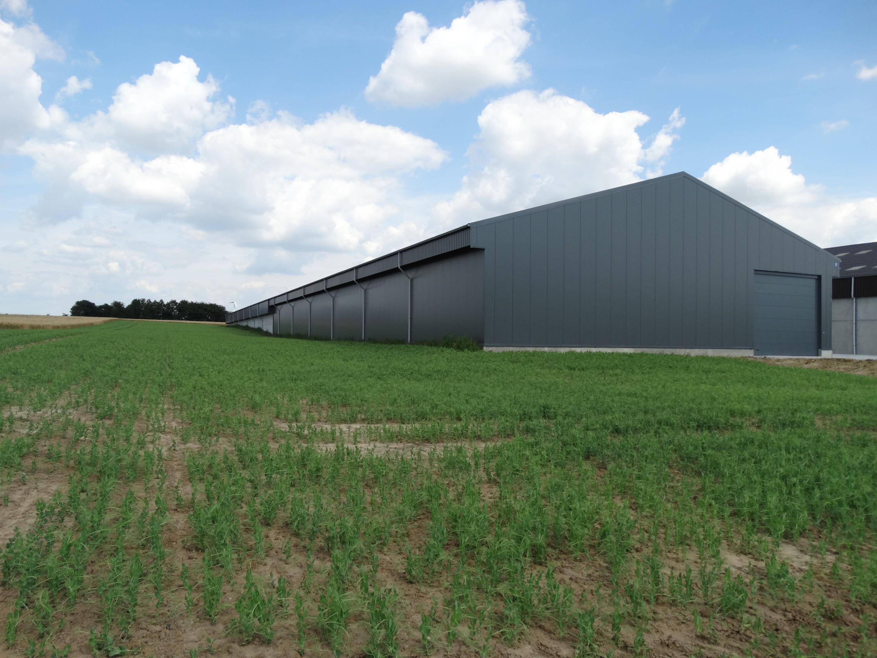 lefevre-Rosseignies-aardappelloods_hangar stockage pommes de terre (30)