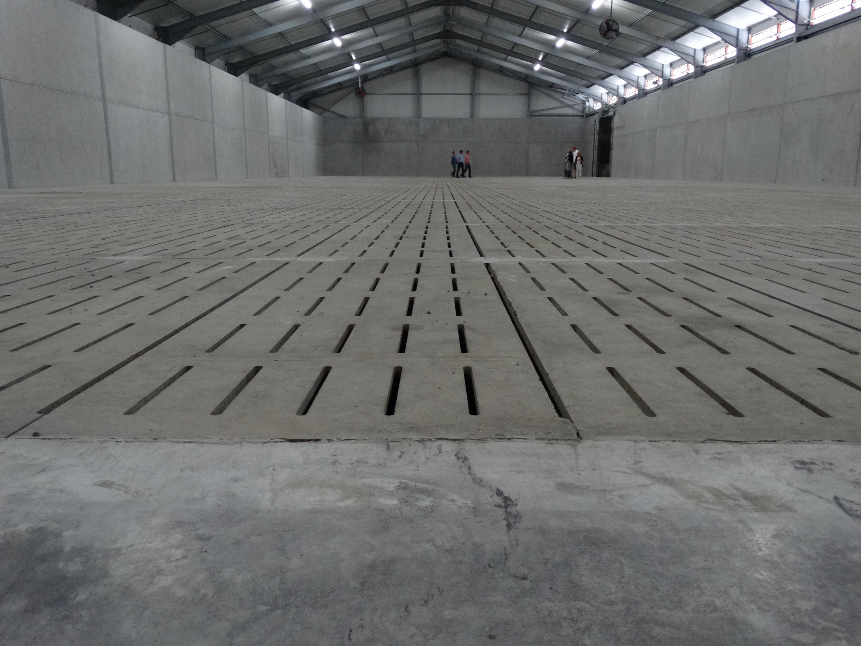 lefevre-Rosseignies-aardappelloods_hangar stockage pommes de terre (40)