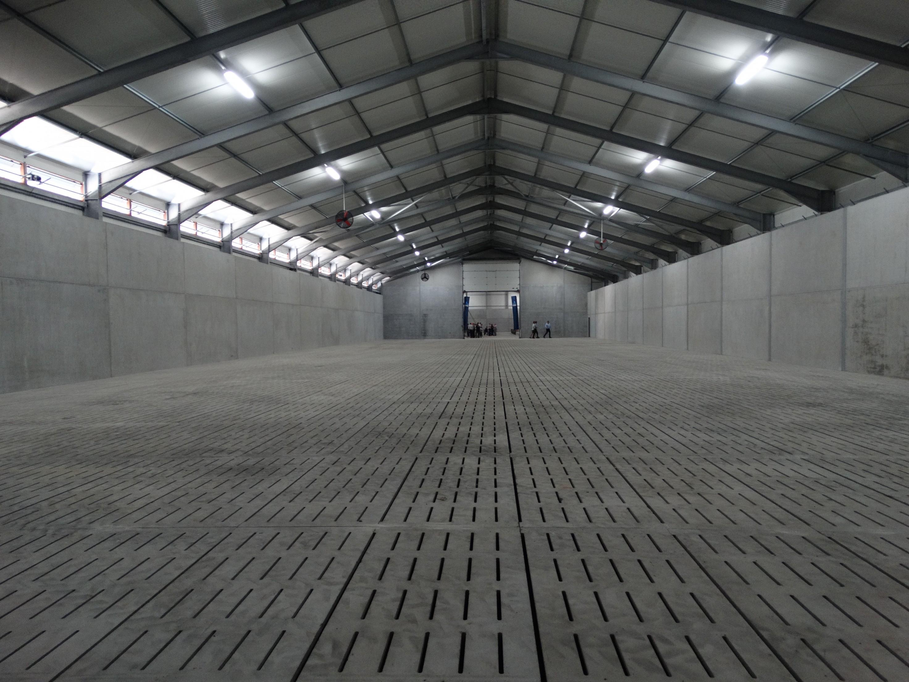 lefevre-Rosseignies-aardappelloods_hangar stockage pommes de terre (66)