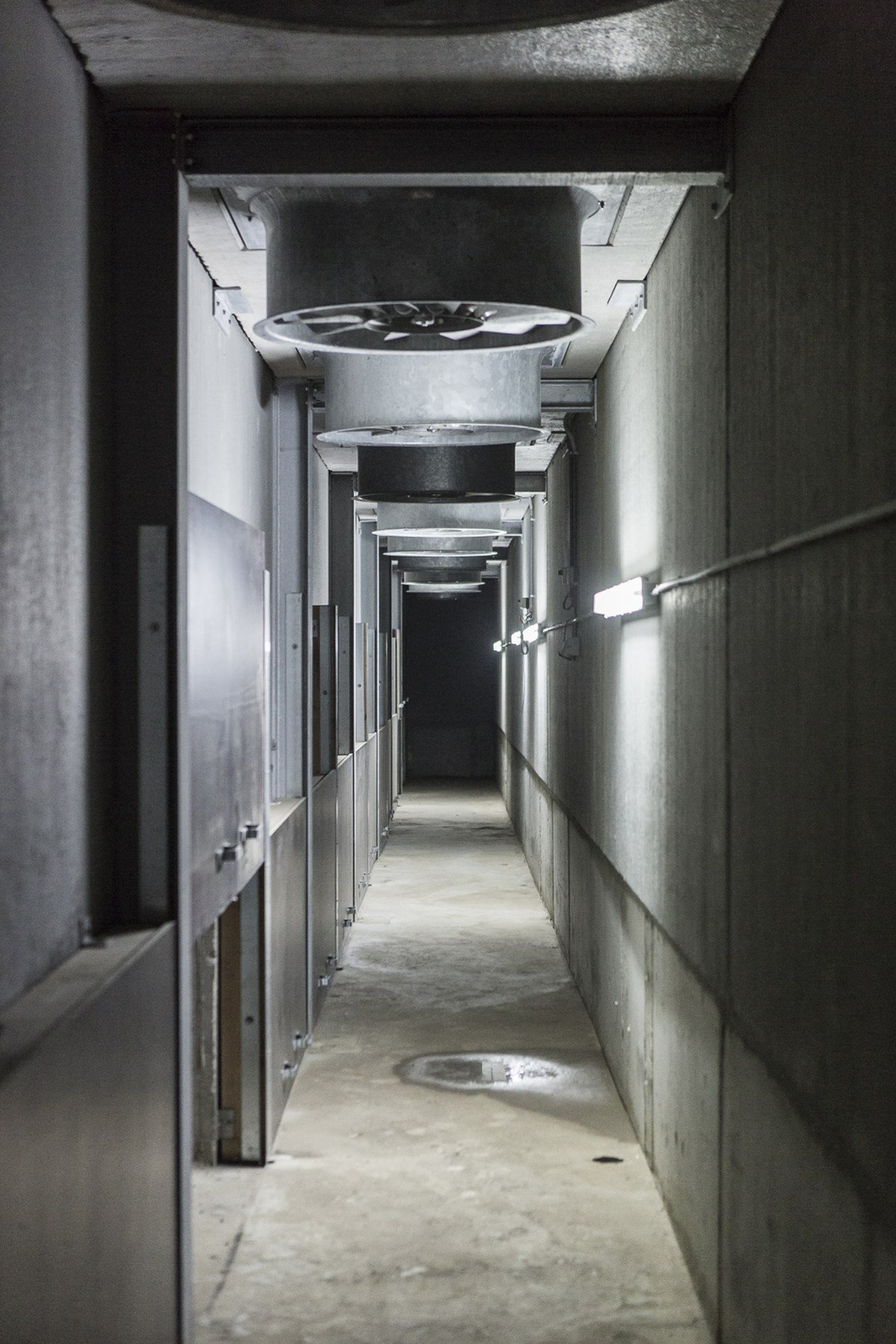 LV Dauchy_Wijtschate_aardappelloods_hangar_pomme_de_terre16