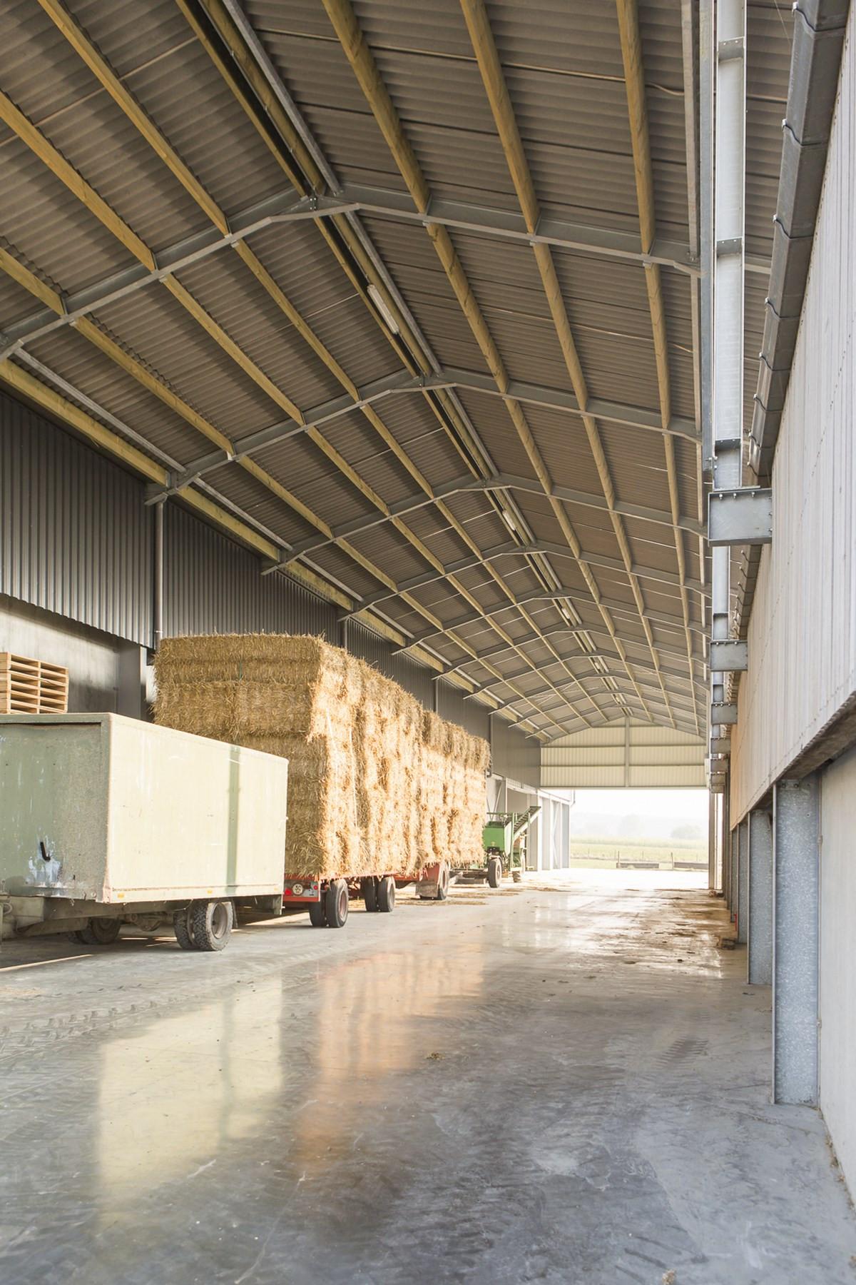 LV Dauchy_Wijtschate_aardappelloods_hangar_pomme_de_terre9