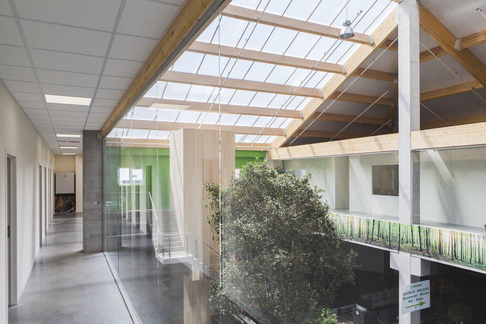 tuincenter famiflora Dottenijs (61)