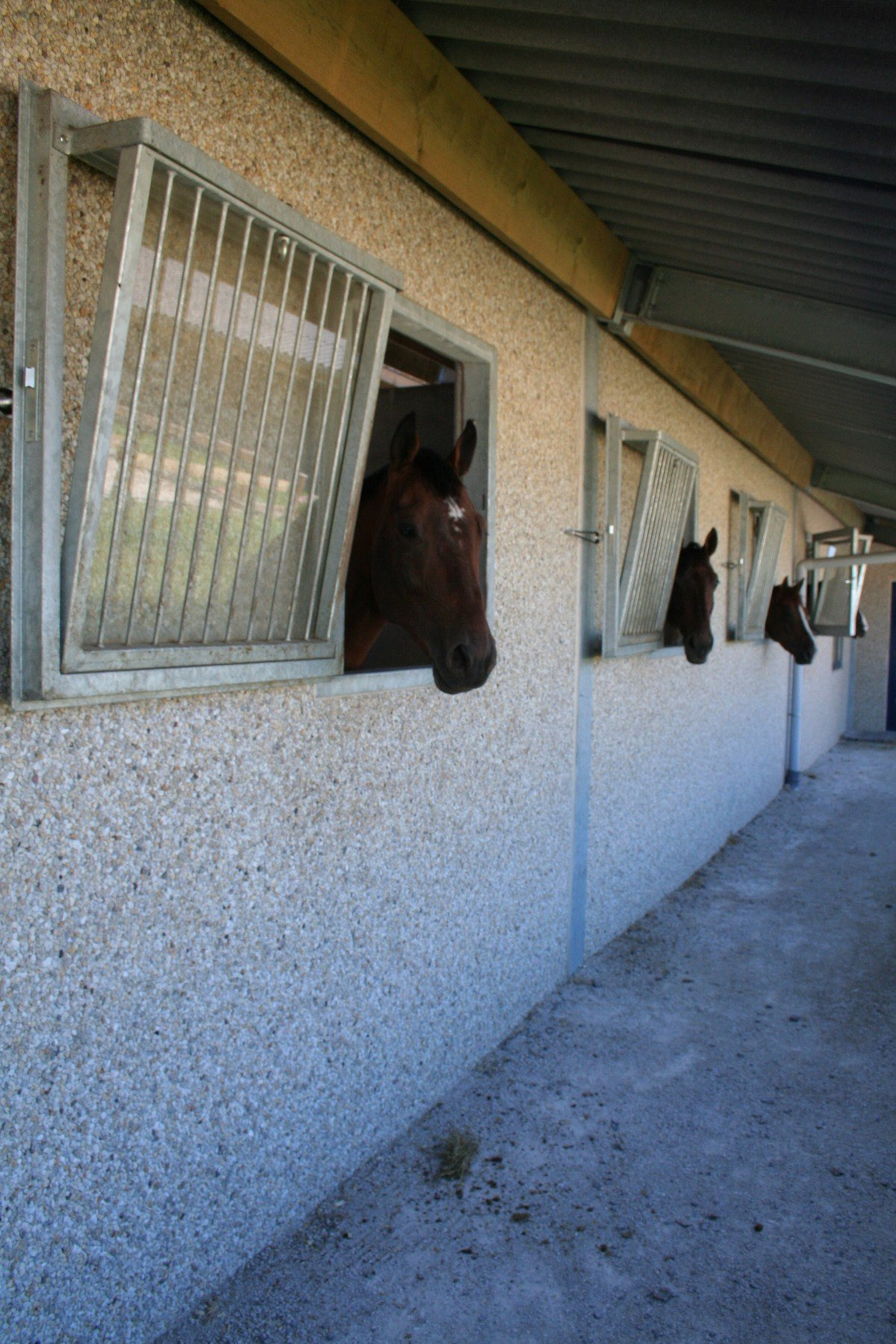 saint hermelle_paardenstallen_paardenboxen_binnenpiste_gouy les Pieton (12)