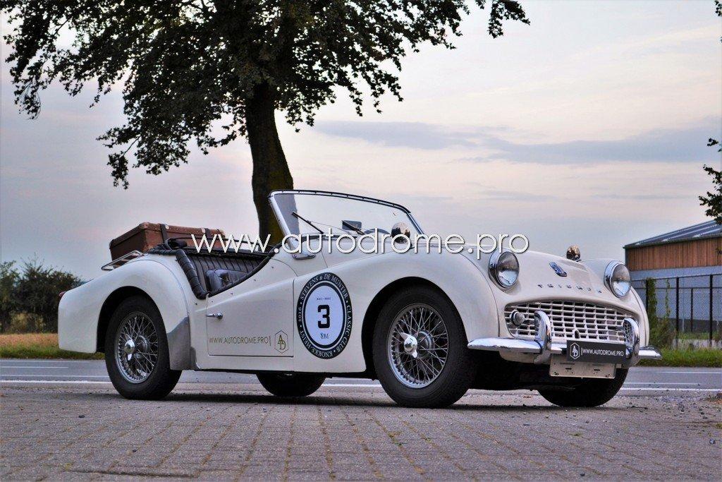Triumph TR3_Watermerk 1