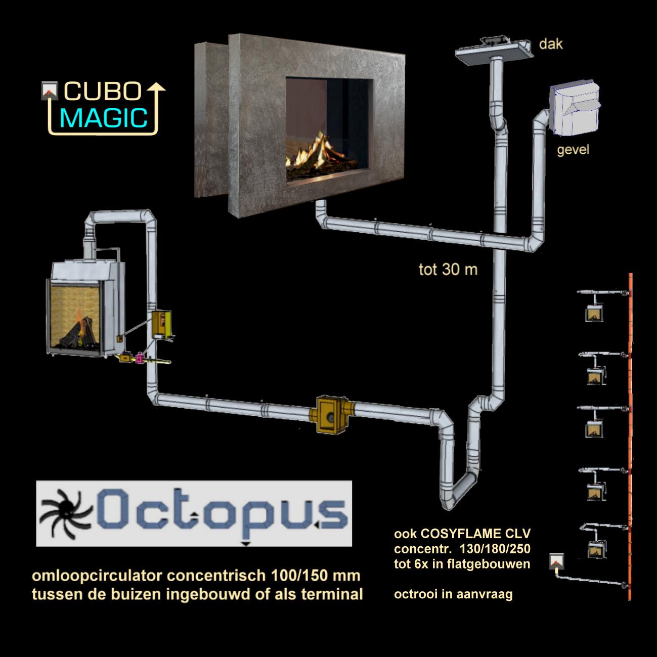 Octopus-2017-01-27-FOTO-pag-3-onder-R
