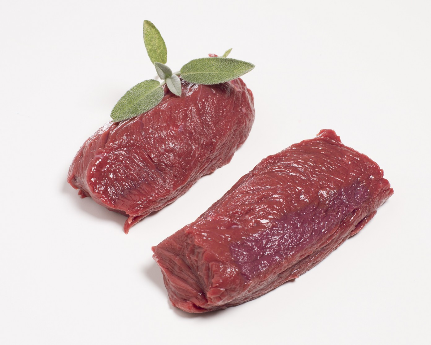 Kangoeroe filet R.jpg