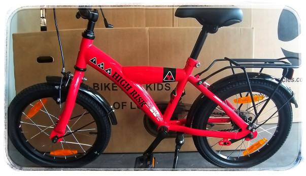 Bikefun high risk 16 rood