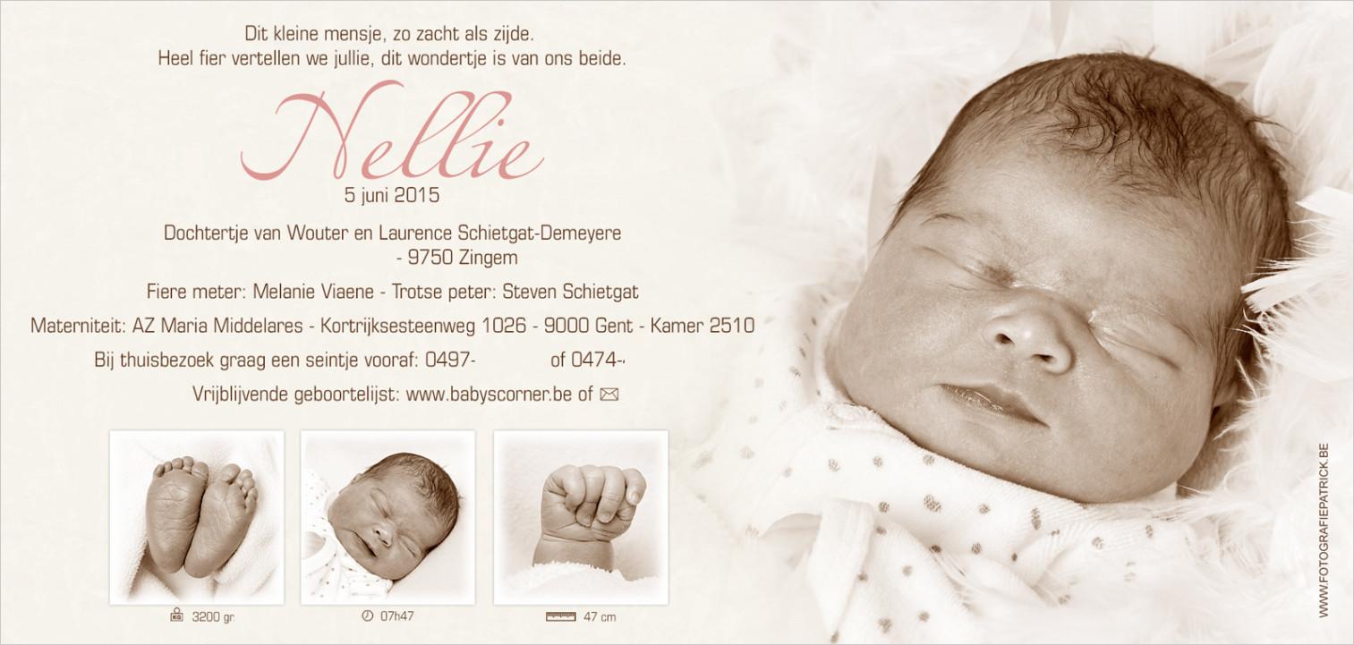 Geboortekaartje met foto van Nellie