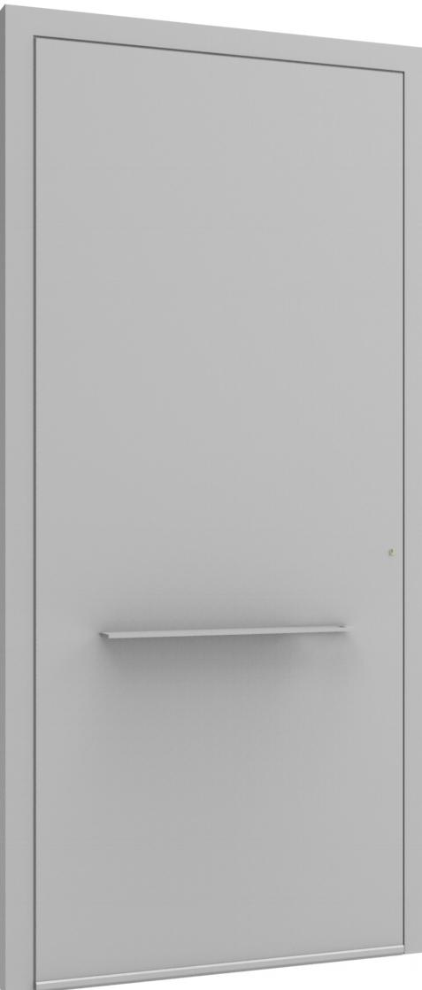 Porte d'entrée FLAT + TUBE018 HOR de la gamme Minimal posée par les établissements CELEREAU à Roncq