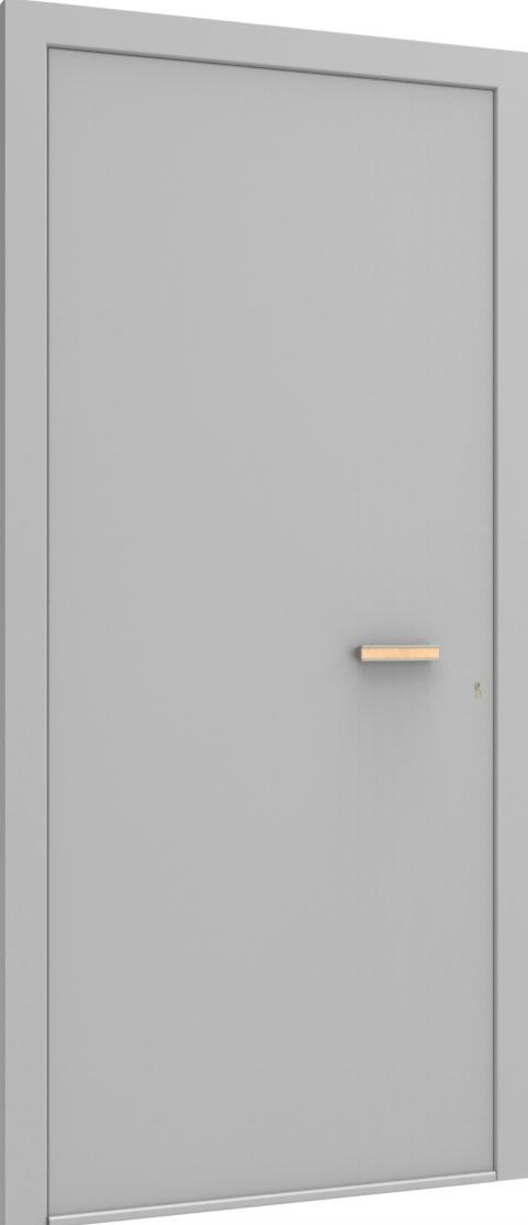 Porte d'entrée FLAT + TUBE051 HOR de la gamme Minimal posée par les établissements CELEREAU à Roncq