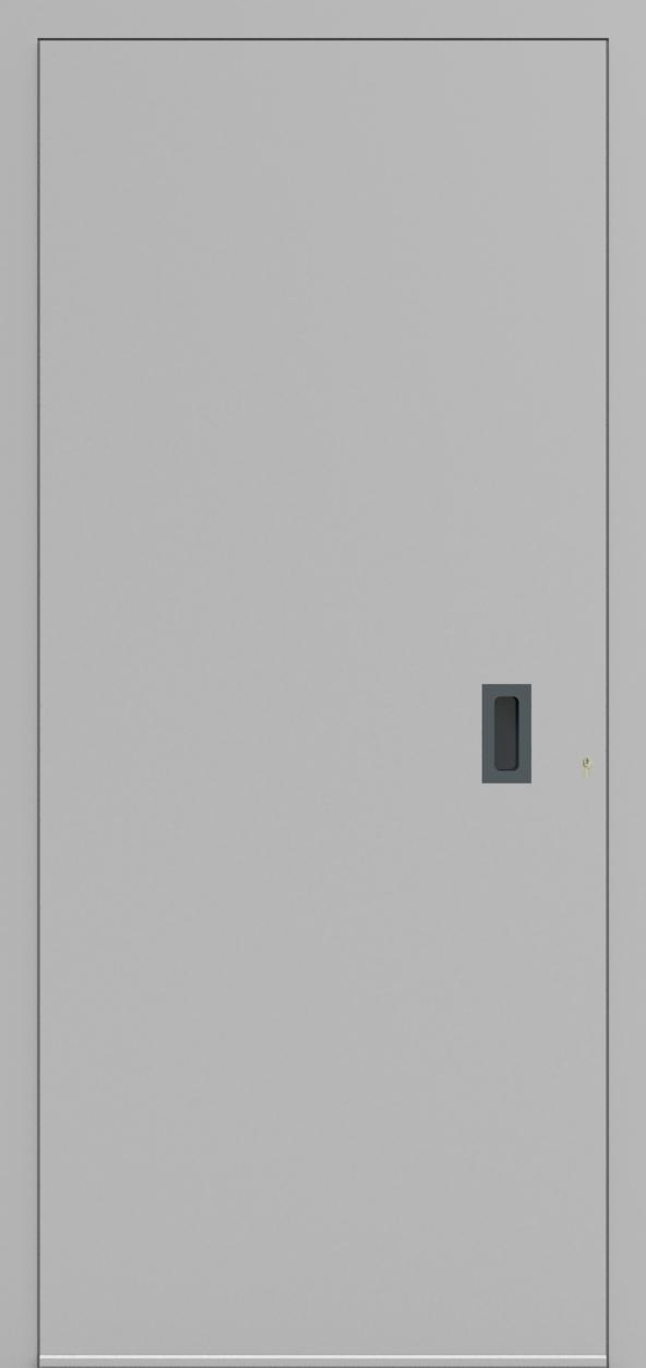 Porte d'entrée ONE 3.0 de la gamme Minimal posée par les établissements CELEREAU à Roncq