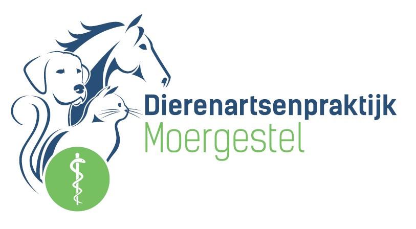 Dap_Moergestel.jpg