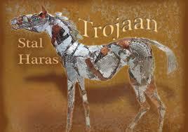 Stal Trojaan.jpg
