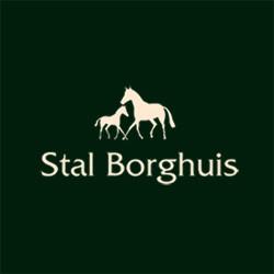Stal_Borghuis.jpg