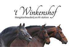 Winkenshof_Hengstenhouderij.png