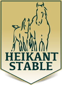 heikant_stable.png