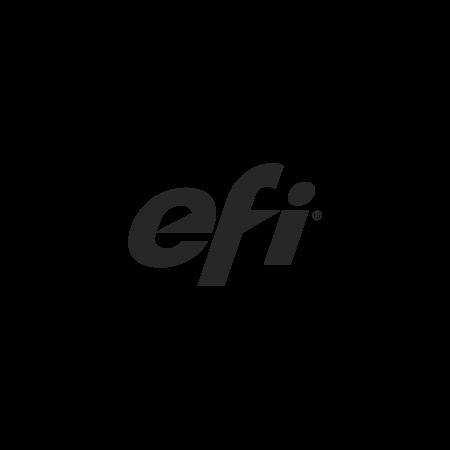 Logo-Efi.png