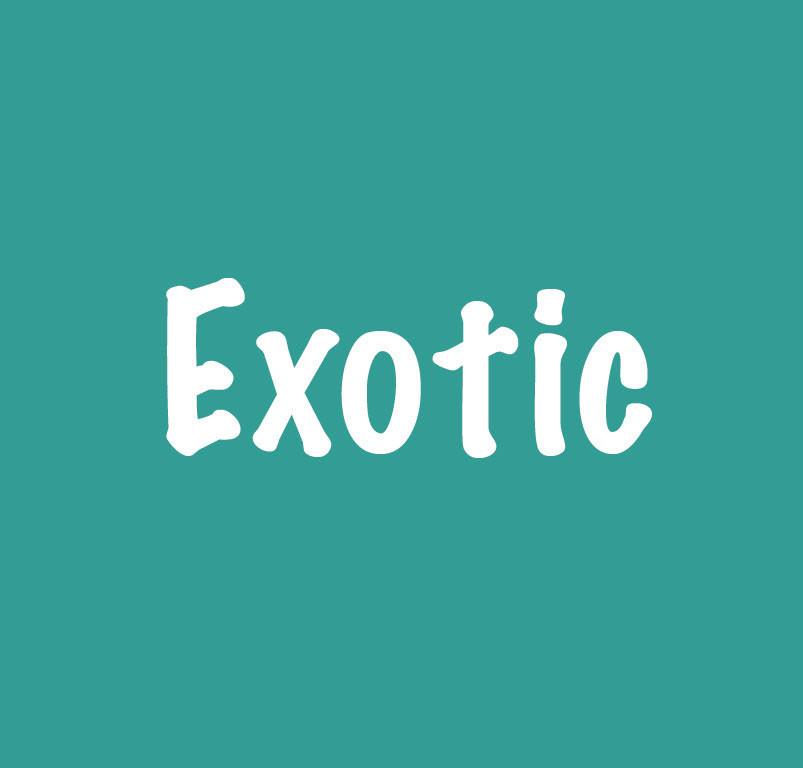 Exotic_Titel