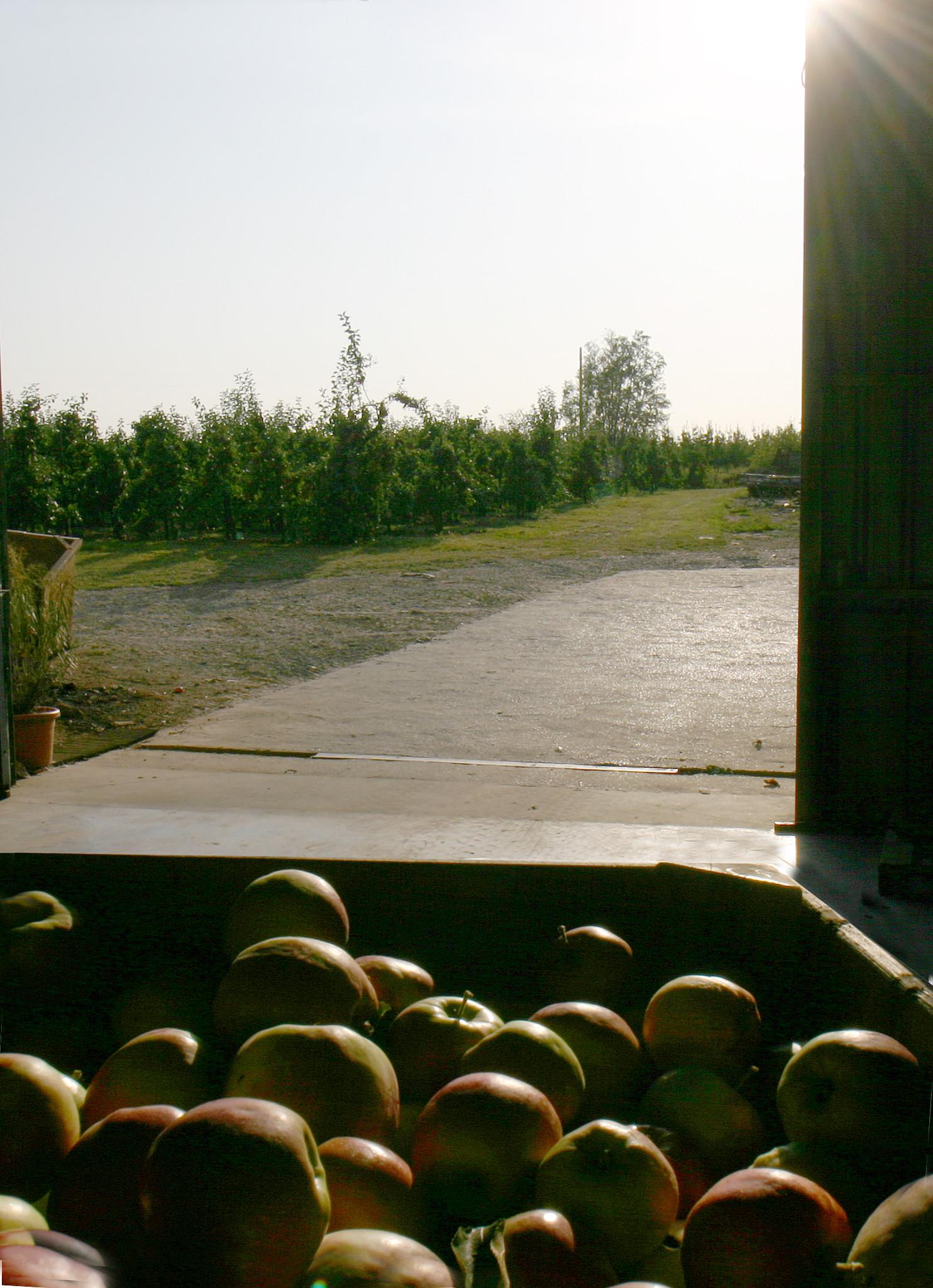 Fruithoeve Beurtegoed 7.jpg