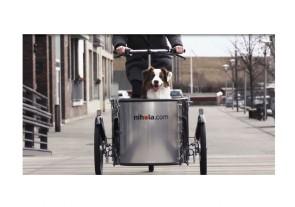 csm_Riding_the_nihola_DOG_Copenhagen_28287c5456