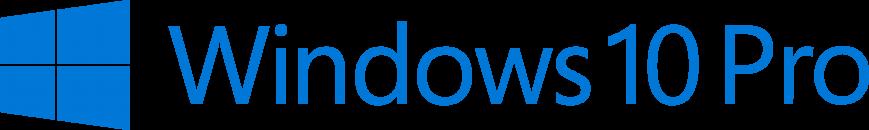 Windows 10 Pro.png