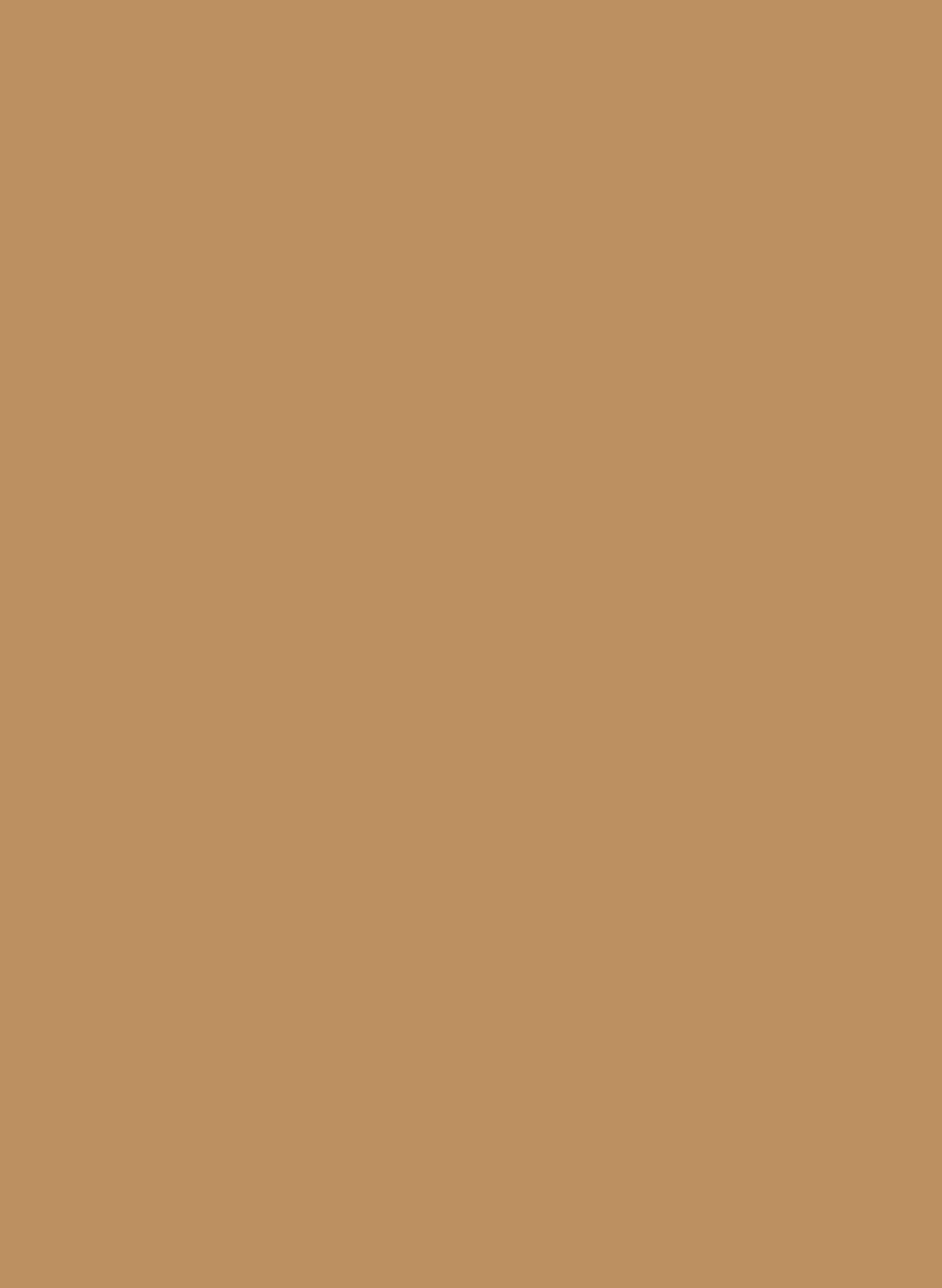 206-01 Caramello.jpg