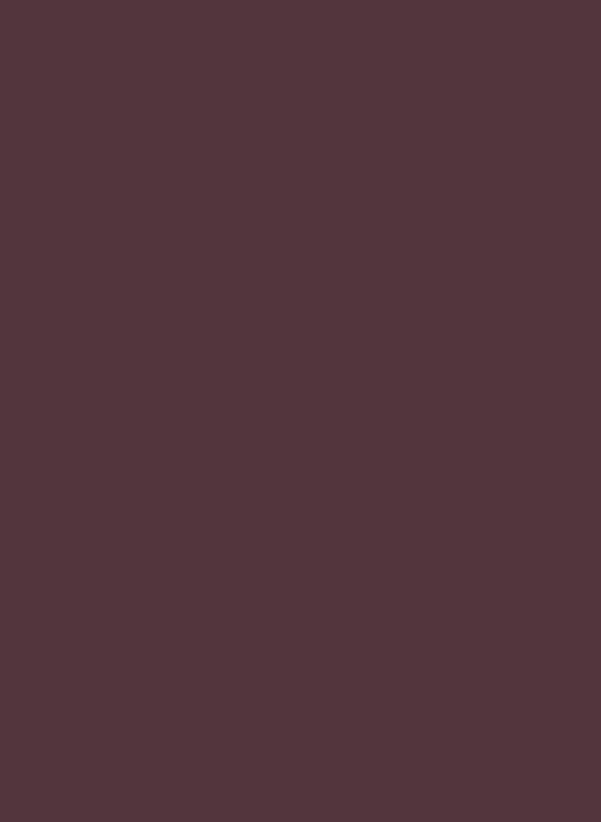 333-01 Cérise noir
