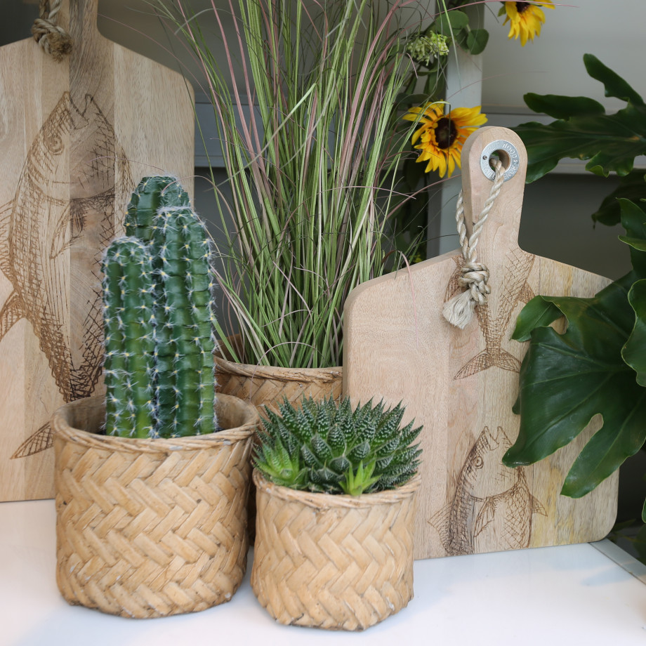 Bloemen en decoratie   Vanallemeersch-Deraedt