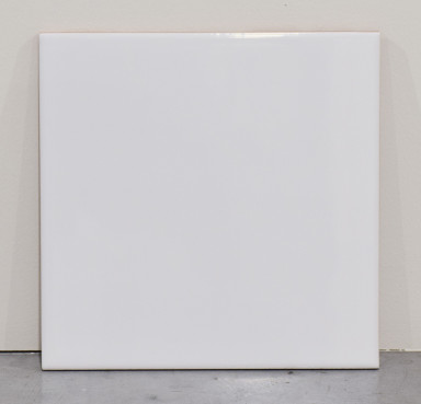 wit blinkend 15x15.jpg