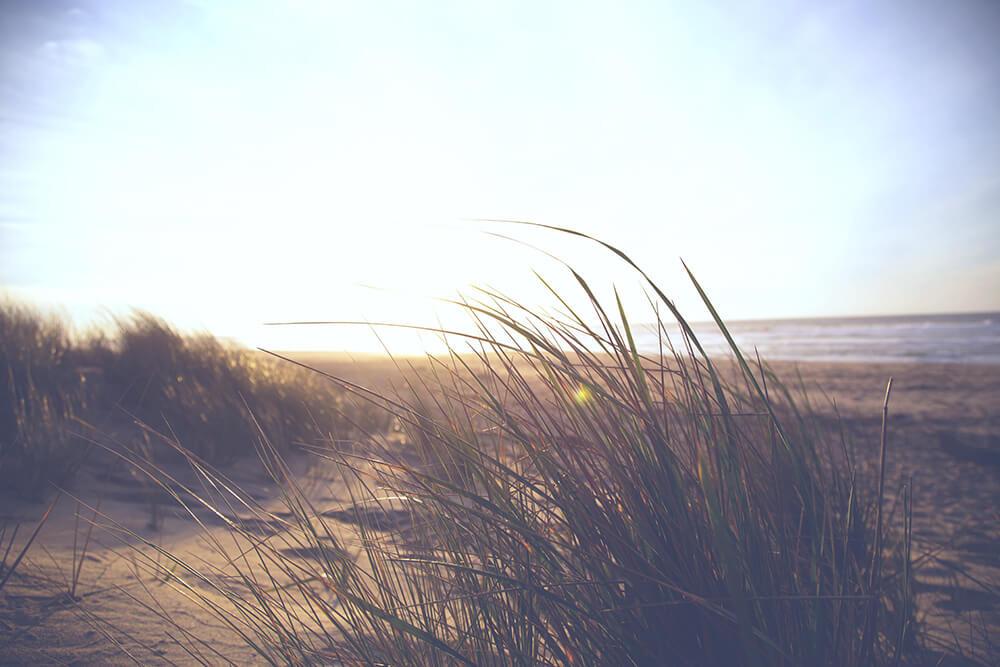 zeeparken-blog-strand.jpg